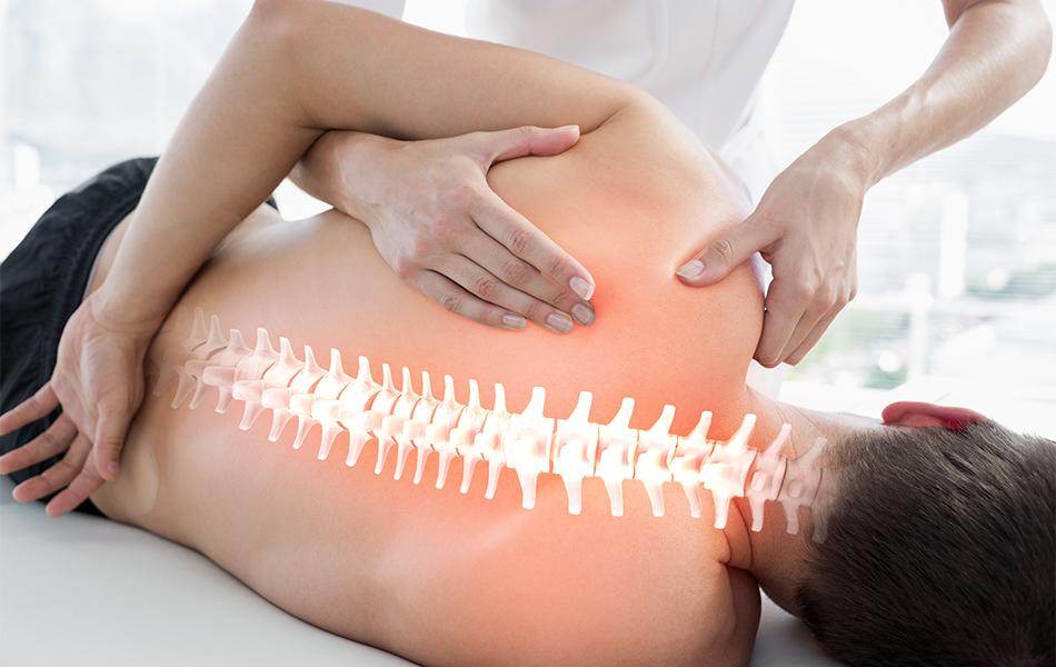 Chiropracticien